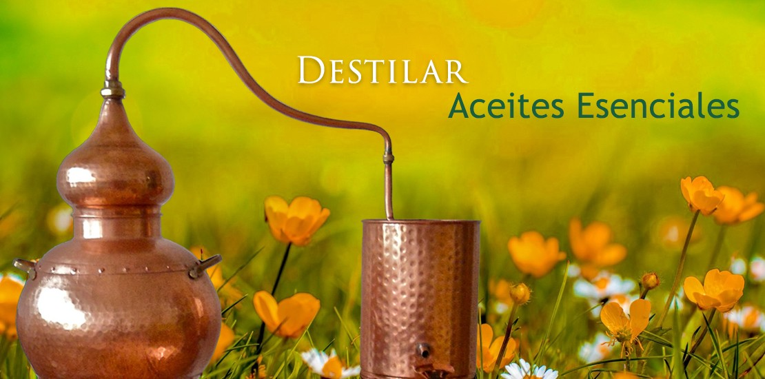Destilar Aceites Esenciales